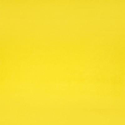 Princeton Mustard